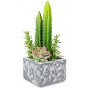 Ozdoba Kaktus